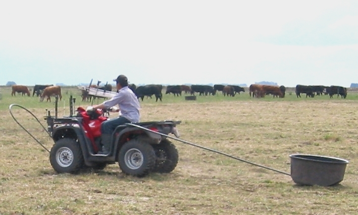 TechnoGrazing in South America.  Quad fitted with Fender Kit, ExolSkeleton and PowerPac towing a Round 100L trough.  Round 100L Troughs can water up to 100 adult cattle.